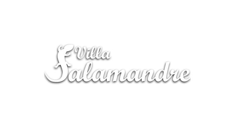 Villa la Salamande Provençale